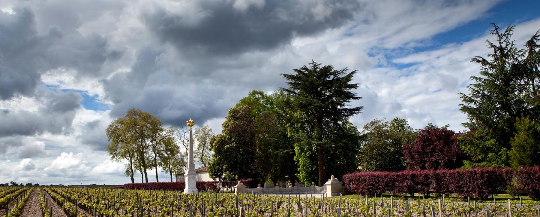 Château d'Armailhac - Cinquième cru classé Bordeaux