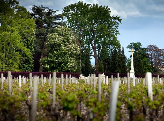 <p>Le Plateau de l&#8217;Obélisque et le parc de Château d&#8217;Armailhacau printemps.</p>